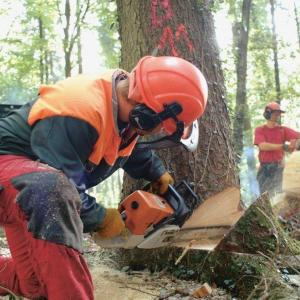 Accesoire forestier
